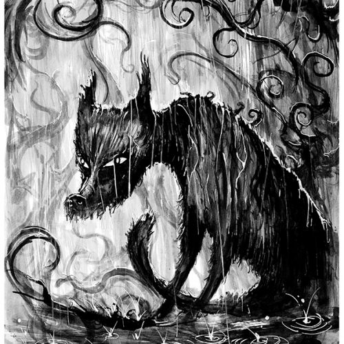 Thumbnail for the post titled: The soggy bad wolf